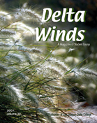 Delta Winds cover 2007