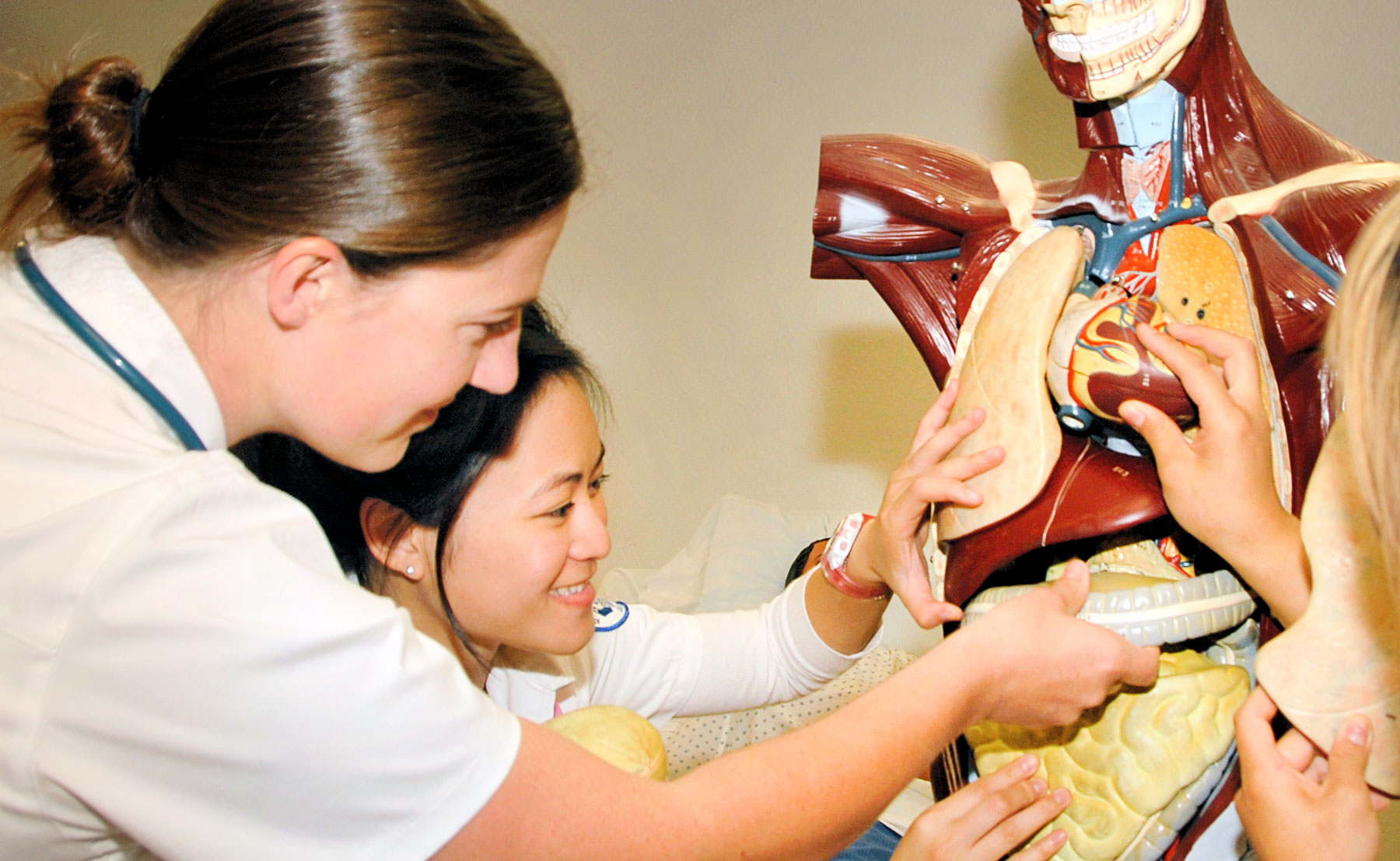 Nursing students study anatomy