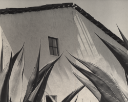 Photo by Manuel Alvarez Bravo, Ventana a los Magueyes, Mexico; UC Riverside California Museum of Photography