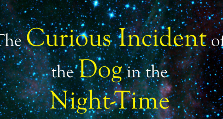 Curious Incident Promo Poster