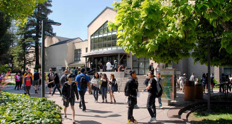 San Joaquin Delta College is transitioning from district-wide elections to area elections.